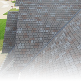 Designer Series Shingles